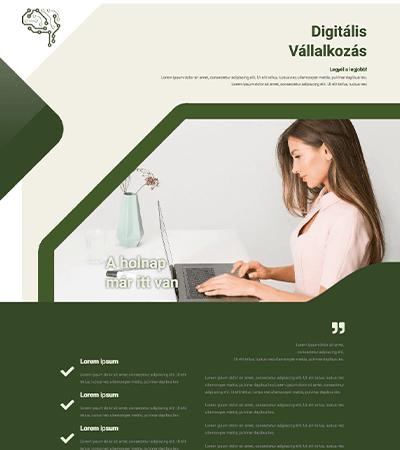 business-demo-screen-wordpres-weboldal